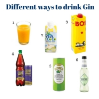 6 Different ways to drink gin