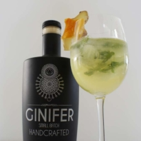 Ginger Mango Gin Cocktail With glass 2 Ginifer Gin