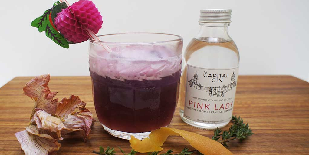 Hibiscus Pink Lady gin cocktail Header