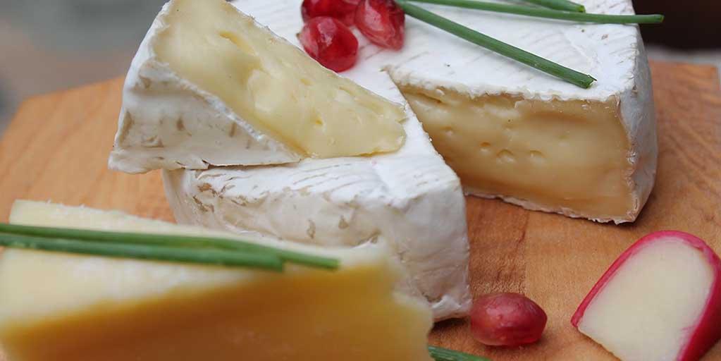 Whisky and camembert cheese pairing header